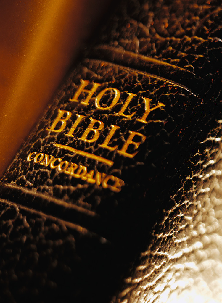 The heart of god bible study